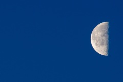 Early-Morning-Moon-with-Blue-Sky-LR