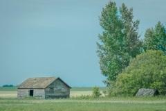 Abandoned-Homestead-near-Clavet
