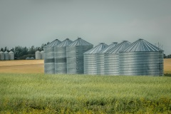 Farm-of-Silos