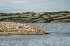 Manitou-Beach-Aug-7-Natural-Flow