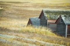 Sinking-Prairie-Community