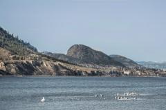 Lake-Okanagan-from-the-beach